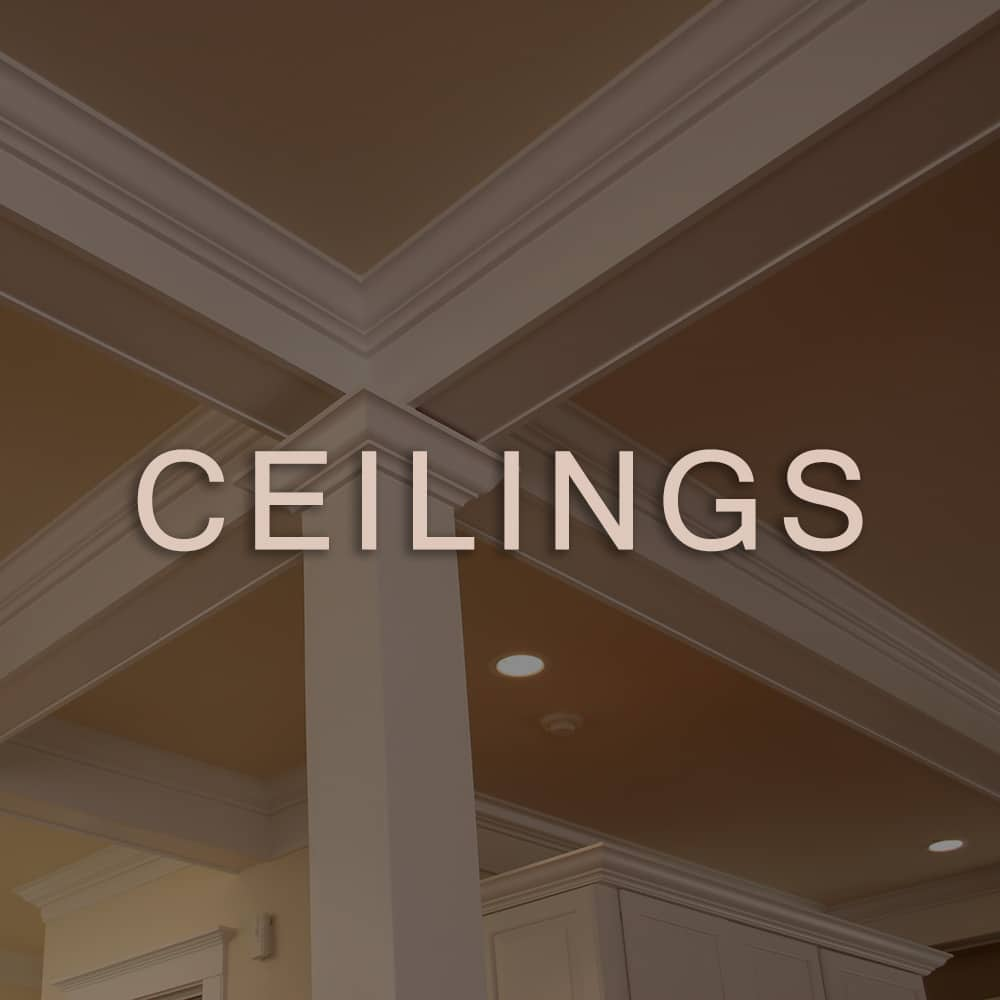 plasamo roomdesign ceilings